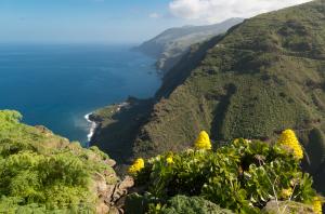 Küste von La Palma