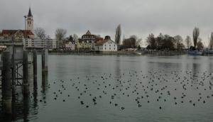 Hafen in Romanshorn