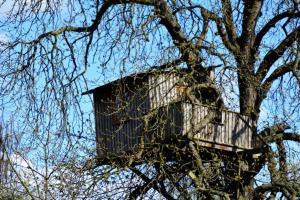 An einem Luxus-Baumhaus