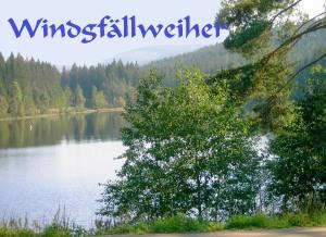 Windgfällweiher 7