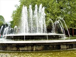 Im Nordpark von Düsseldorf.
