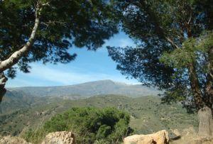 Das südliche Andalusien in der Nähe von Ronda