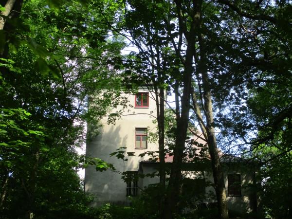 Das Schloss Eisenburg schaut durch die Bäume raus