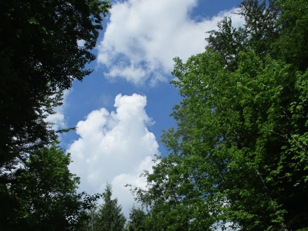 Mal ein Blick zum Himmel!