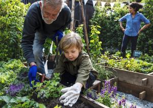 Mann und kleiner Junge beim Gärtnern
