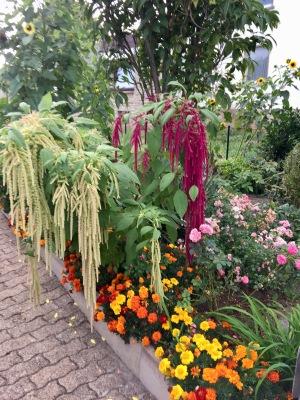 Was liegt mir am Herzen. Unser Zusammenleben und dann kommt, so glaube ich, unser Garten.