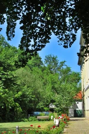 Unter Goethes Ginkgobaum