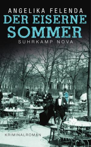 Der eiserne Sommer - Reitmeyers erster Fall, © Suhrkamp Verlag