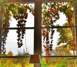Bunter Herbst (2).jpg