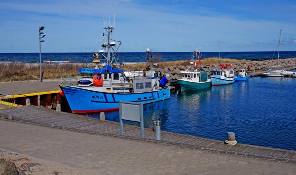 Anlegebootsteg in der Marina