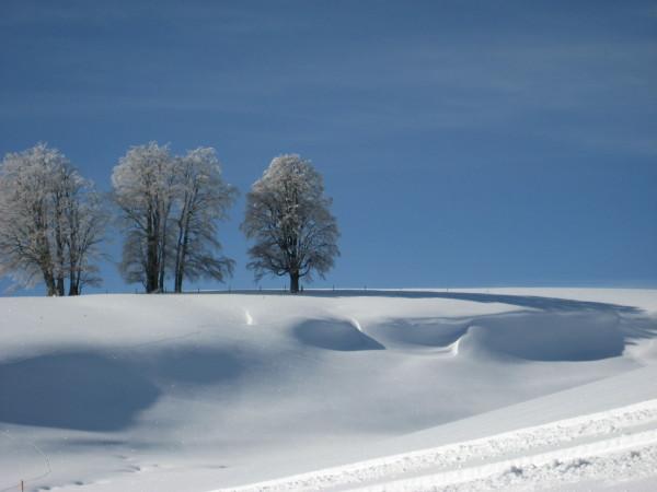 das Schneeloch.jpg