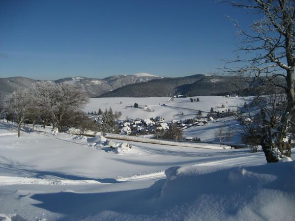 Schnee 18.02.09 004.jpg
