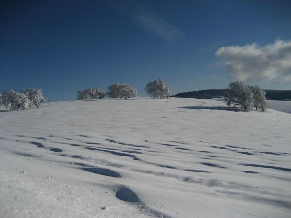 Schnee 18.02.09 014.jpg