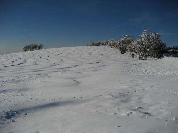 Schnee 18.02.09 023.jpg
