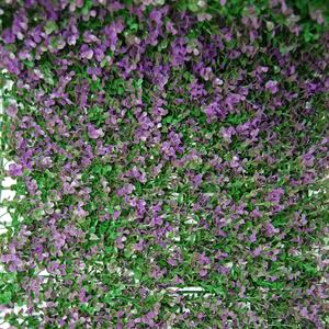 Divy 3D Panel Buxus Lilac Synthetic hedge with intense purple box leaves in interlocking modules