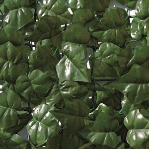 Divy Hedera Siepe sintetica a rotolo con foglie simili all'edera