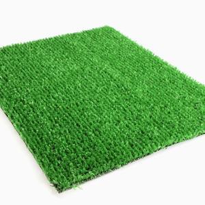 Standard Green Il tappeto verde