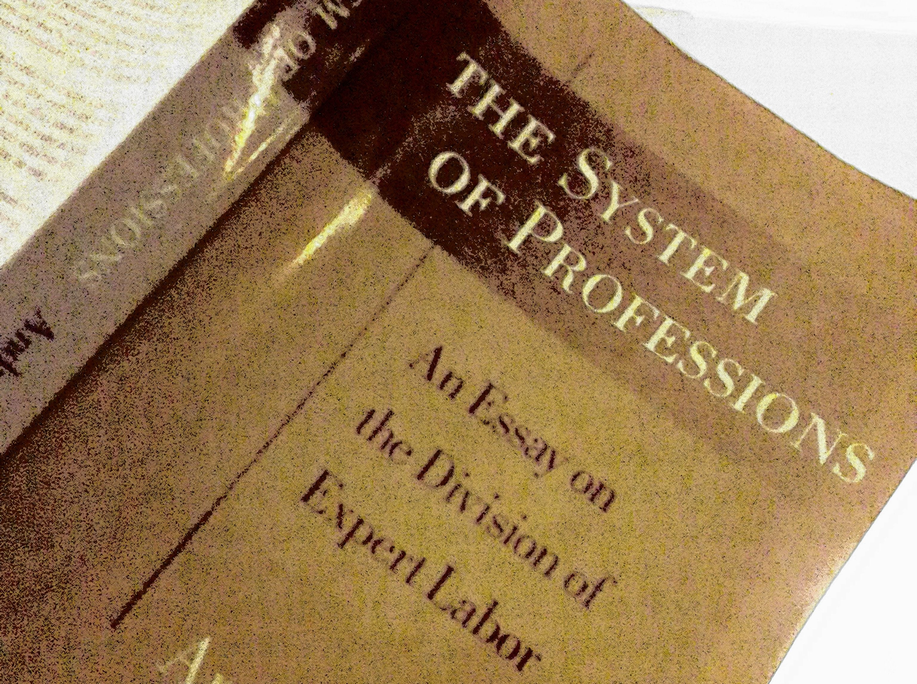 System of Professions