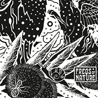 Freqs of Nature