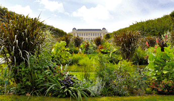Jardin des Plantes, arrondissement paris, paris arrondissement, arrondissements paris