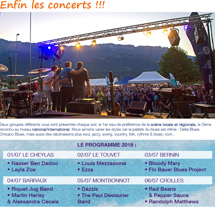 Un concert au Grésiblues