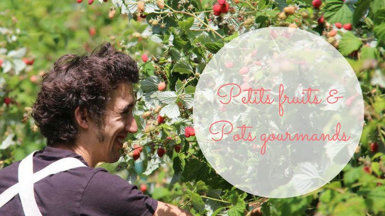 Petits fruits & Pots gourmands : Production de fruits et plaisirs de la bouche