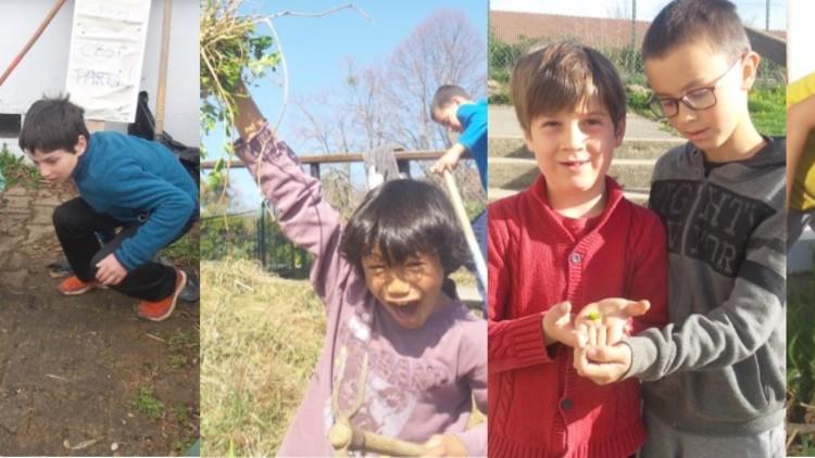 Action nature : Des enfants engagés pour la biodiversité!