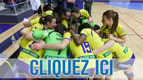 BDP Drôme Handball en route vers la D1 : Aidez notre équipe à poursuivre ses rêves !