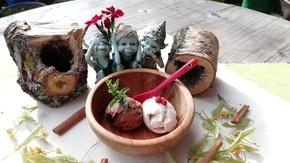 Les Gourmoondises  : Pâtisserie et glaces  made in Vercors