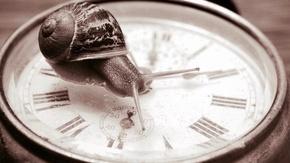 Création d'une conférence gesticulée  : Pour qui a du temps, rien ne presse.