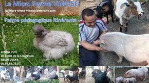 Micro Ferme Pédagogique Itinérante : Un ferme mobile et ludique