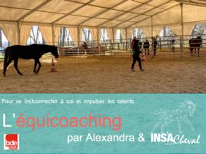 Le cheval pour révéler les talents : Une ingénieure INSA aide à révéler les potentiels