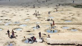 L'eau des plaines : Projet d'agriculture contre la famine à Madagascar