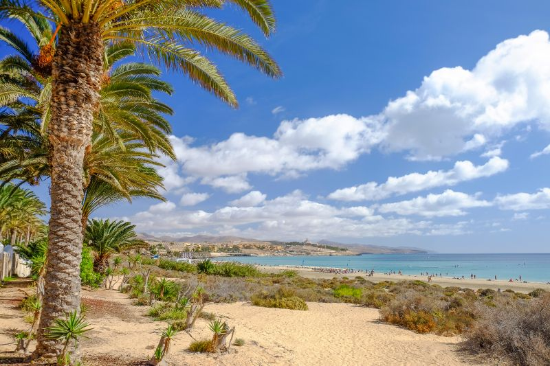 Flieg im Mai nach Fuerteventura!
