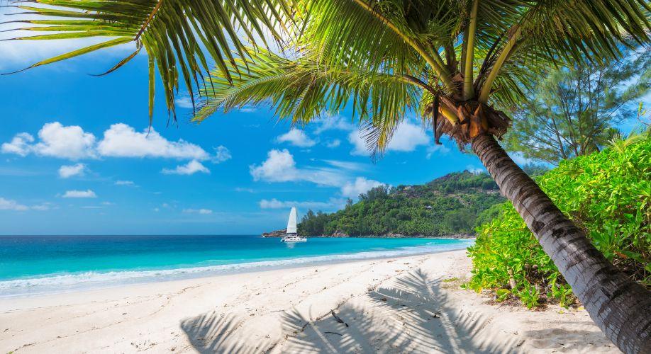 Schnäppchen-Flüge nach Jamaika