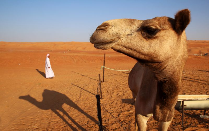 5 Nächte in Abu Dhabi für unter 600 €
