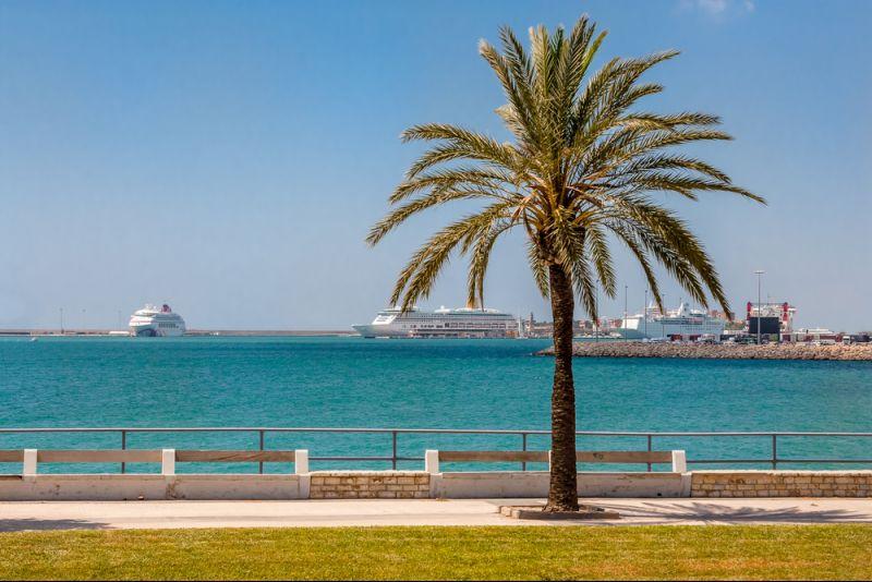 Schnell buchen & sparen: Kreuzfahrt von Mallorca nach Gran Canaria