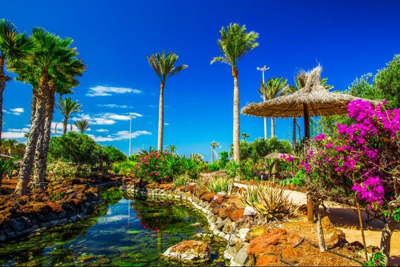 Nach Fuerteventura reisen und sparen