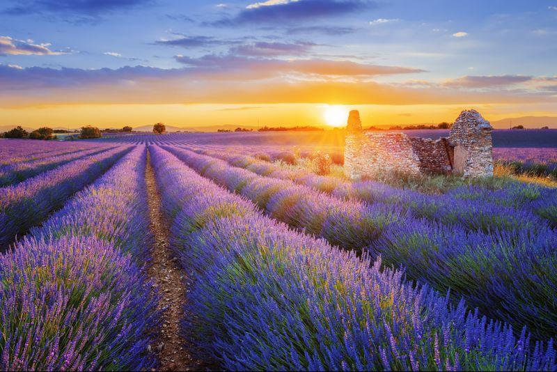Auszeit in der Provence