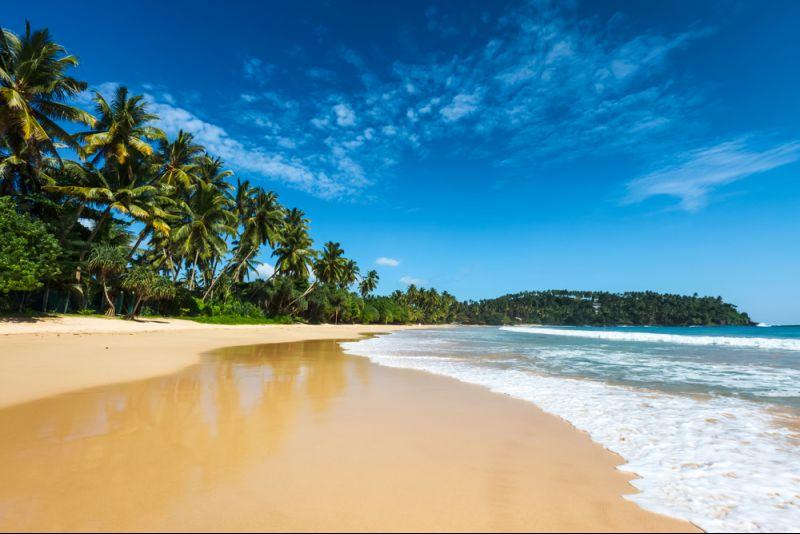 10-tägige Traumreise nach Sri Lanka