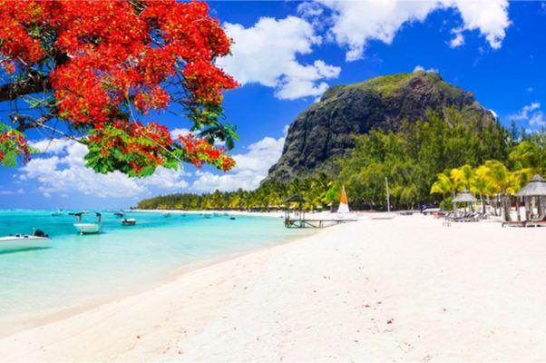Mega Mauritius-Deal mit Gutscheincode