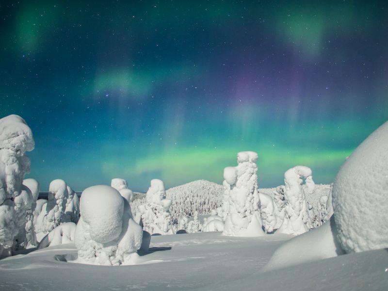 Blockhaus-Woche im finnischen Ruka