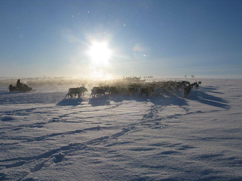 Erlebniswoche im nördlichsten Dorf Finnlands