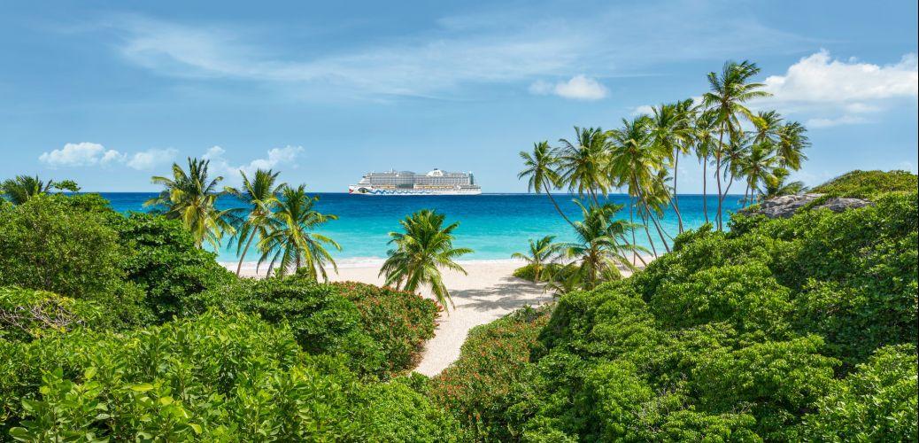 REISEDEAL AUSVERKAUFT: Traumhafte Karibik Kreuzfahrt zum einmaligen Preis!