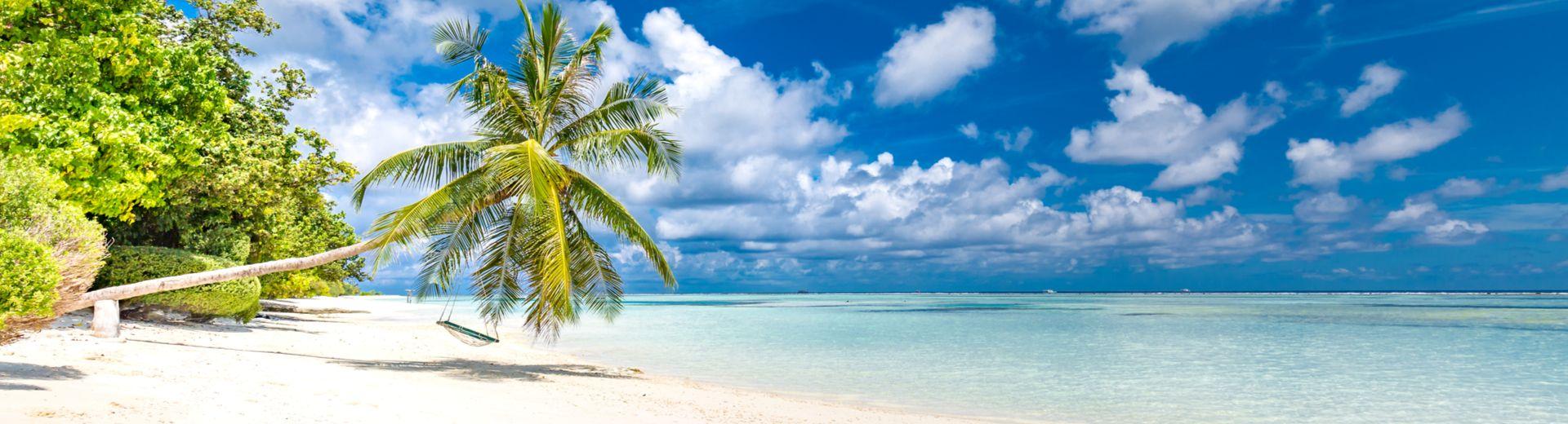 AIDAperla: Im Januar die Karibik entdecken