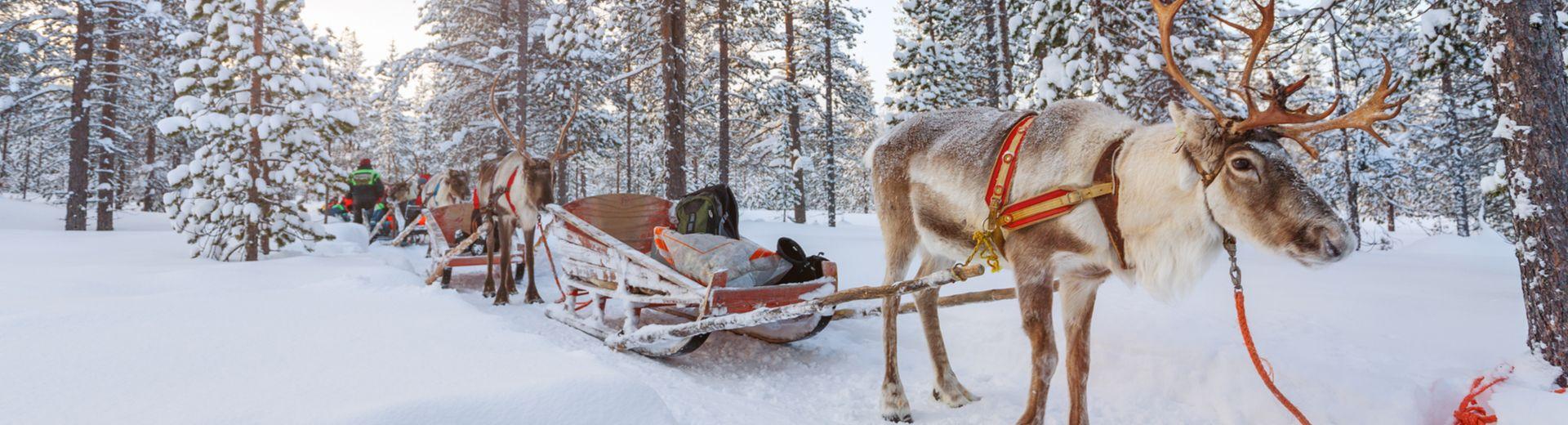 Familienurlaub in Lappland