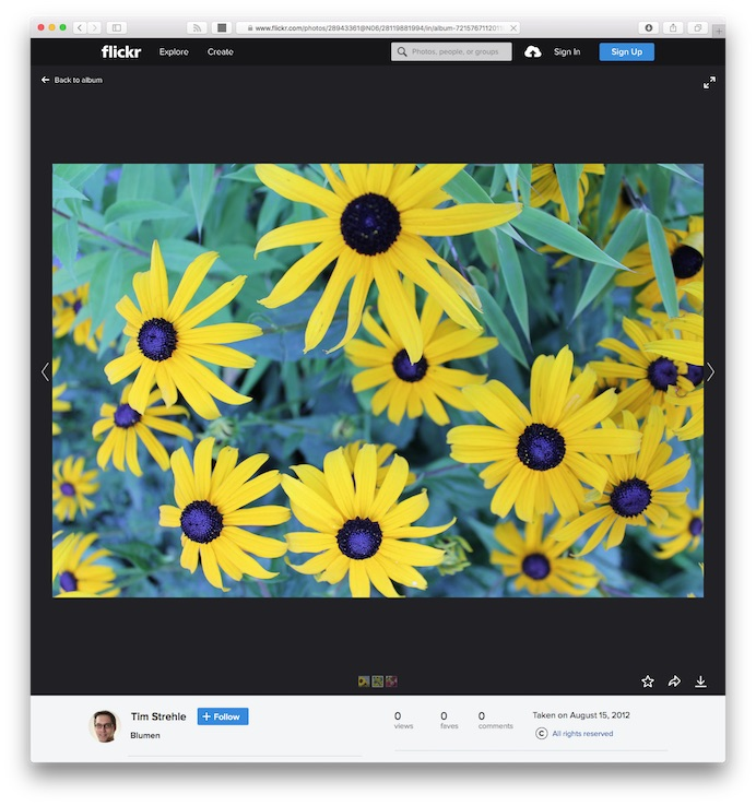 Flickr image details screenshot