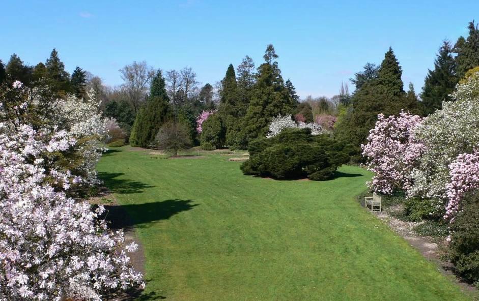 Uitstap naar het Arboretum in Kalmthout