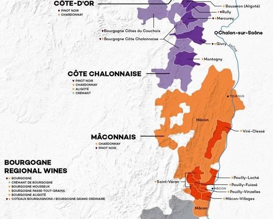 Wijnthema 'Bourgogne: Mâconnais & Côte Chalonnaise'