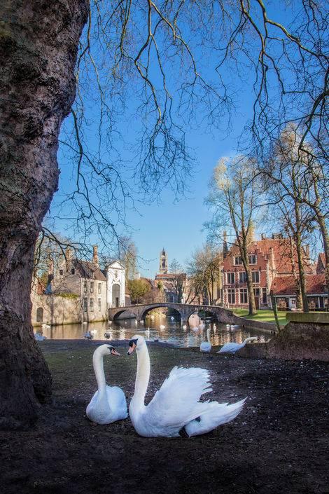 Jaarlijkse daguitstap Brugge